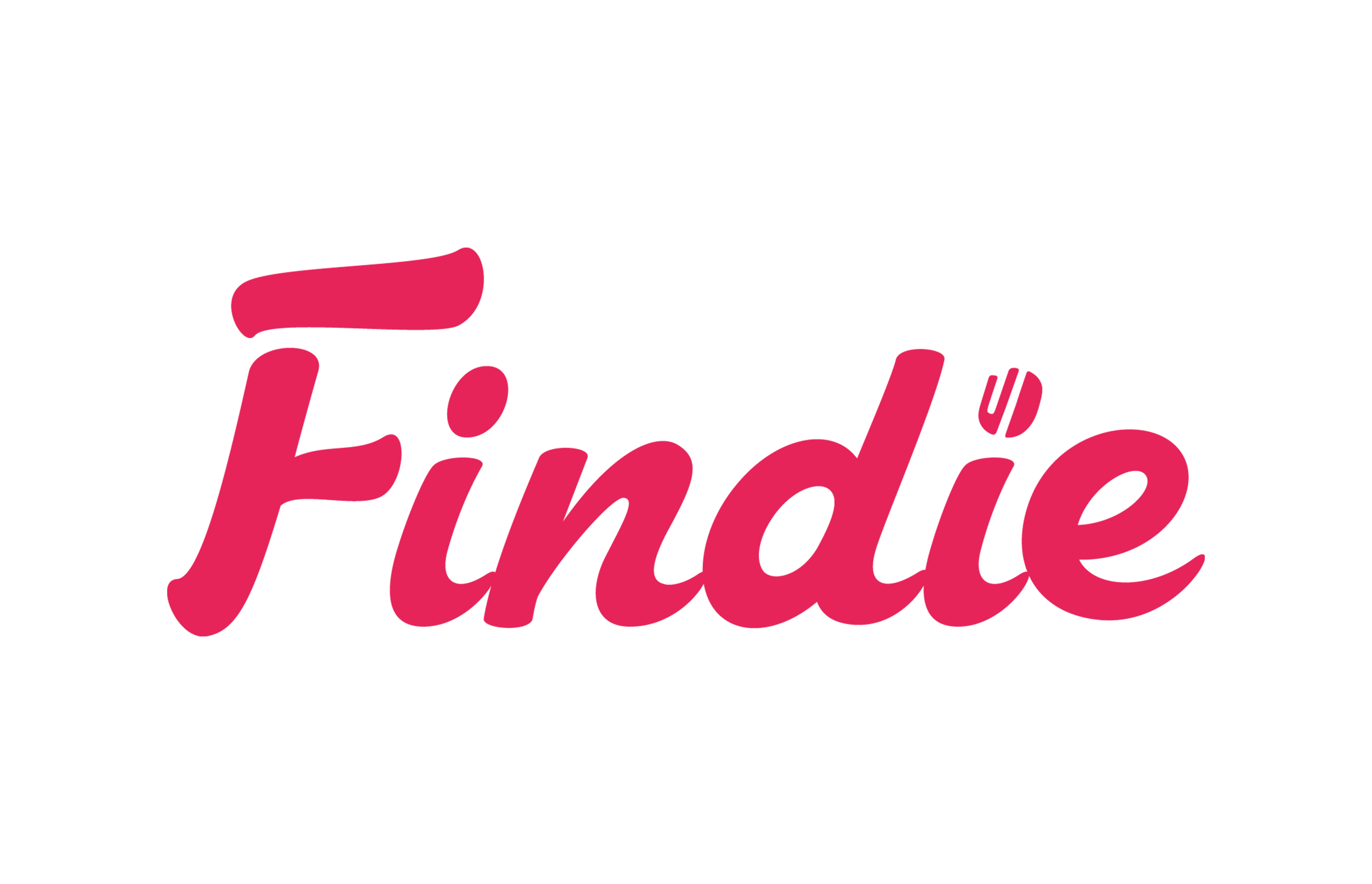 "Outsourcing Success Stories – ""Findie"" Sweden"